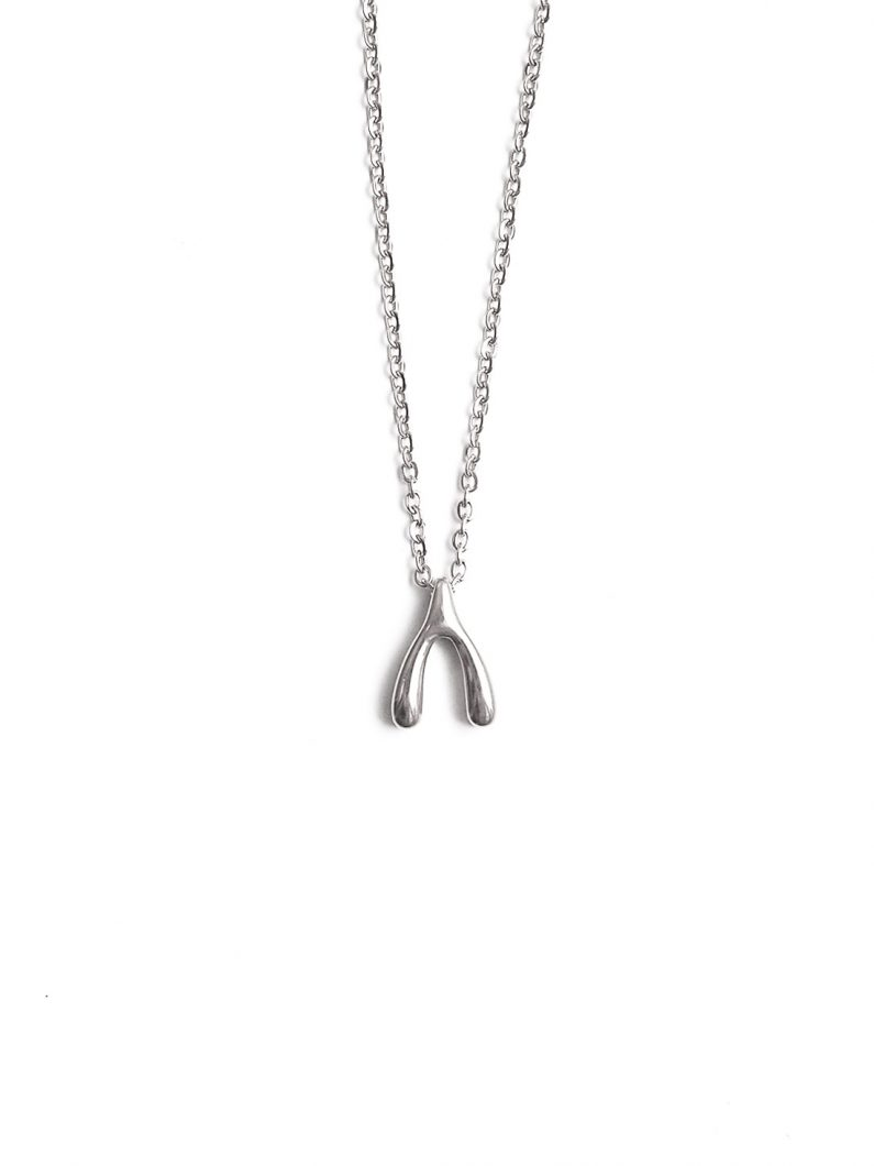 ACC934-(Stainless-Steel)-Mini-Wishbone-Necklace-in-Silver-1